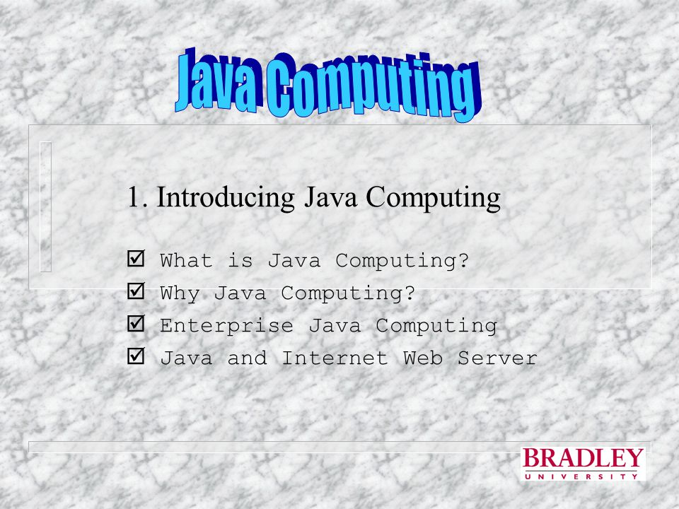 1. Introducing Java Computing  What is Java Computing.