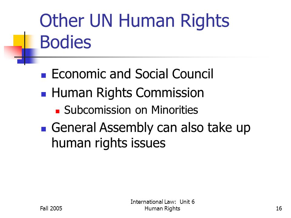Fall 2005 International Law: Unit 6 Human Rights16 Other UN Human Rights Bodies Economic and Social Council Human Rights Commission Subcomission on Minorities General Assembly can also take up human rights issues
