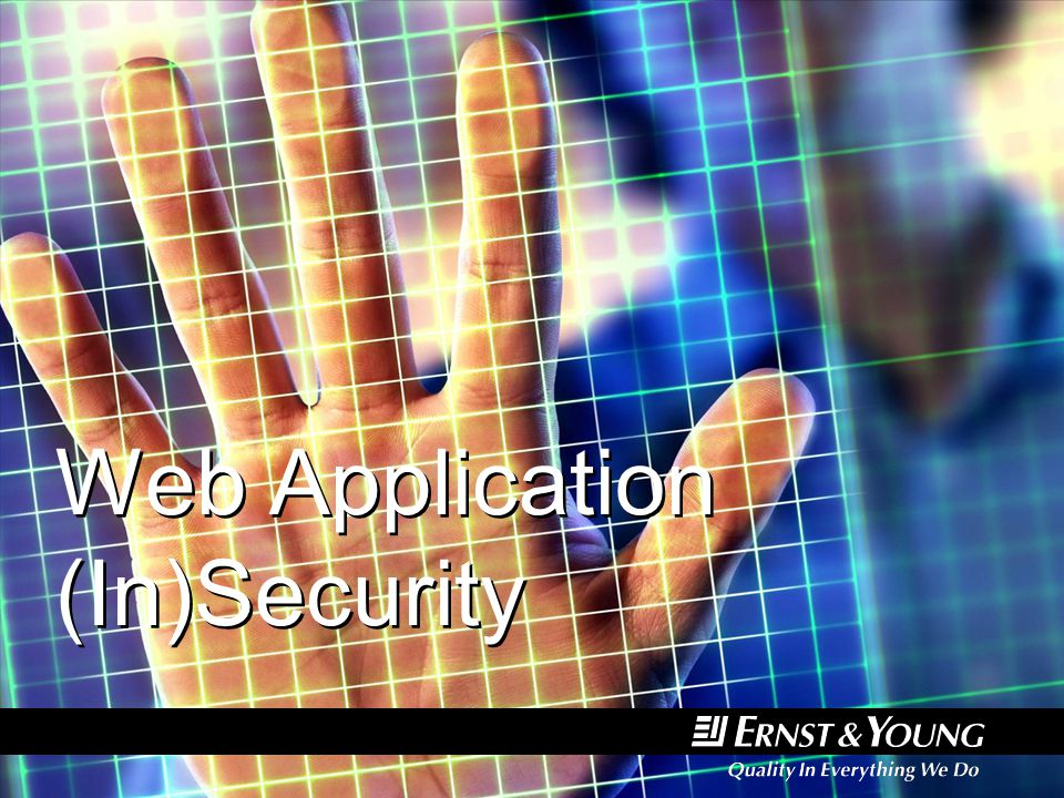 Web Application (In)Security