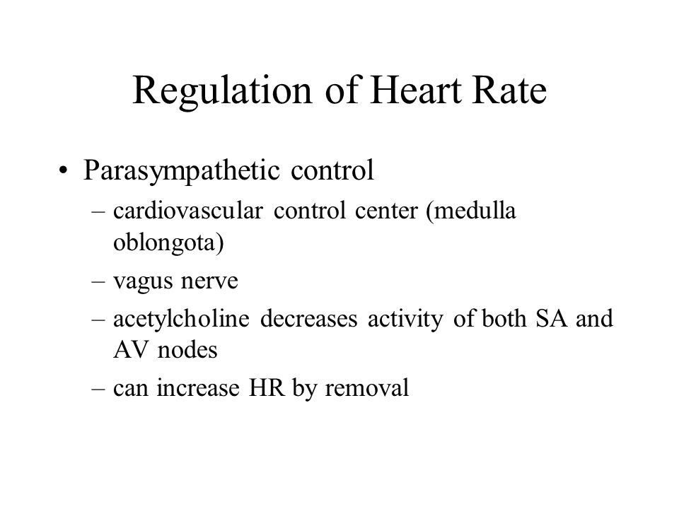 Regulation of Heart Rate Parasympathetic control –cardiovascular control center (medulla oblongota) –vagus nerve –acetylcholine decreases activity of both SA and AV nodes –can increase HR by removal