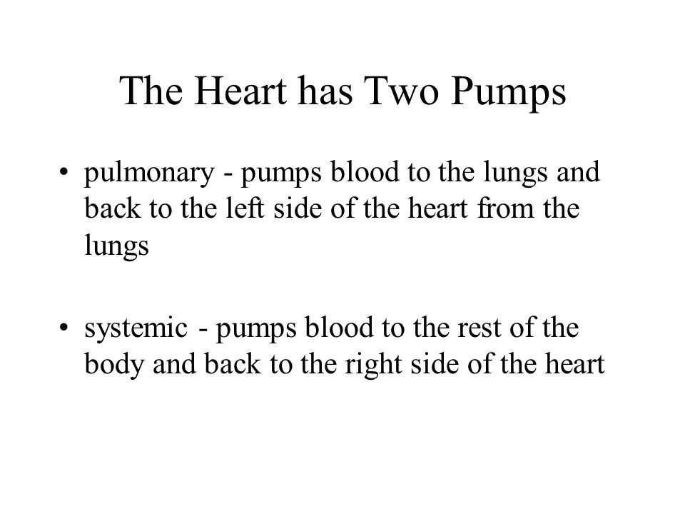 The Heart has Two Pumps pulmonary - pumps blood to the lungs and back to the left side of the heart from the lungs systemic - pumps blood to the rest of the body and back to the right side of the heart