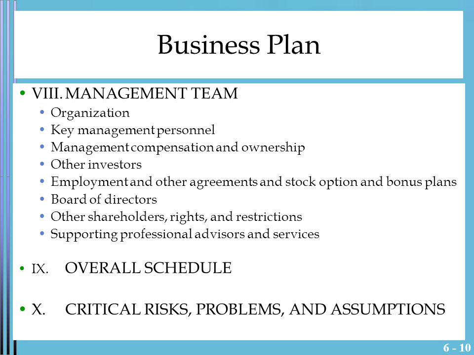Business Plan VIII.MANAGEMENT TEAM Organization Key management personnel Management compensation and ownership Other investors Employment and other agreements and stock option and bonus plans Board of directors Other shareholders, rights, and restrictions Supporting professional advisors and services IX.