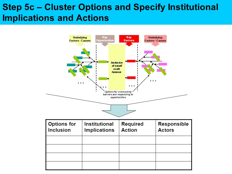 Step 5c – Cluster Options and Specify Institutional Implications and Actions Options for Inclusion Institutional Implications Required Action Responsible Actors