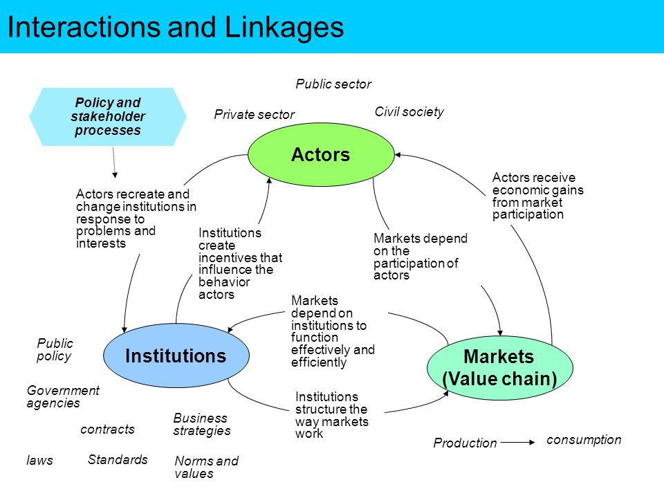 Interactions and Linkages Actors Institutions Markets (Value chain) Actors receive economic gains from market participation Institutions structure the way markets work Markets depend on institutions to function effectively and efficiently Actors recreate and change institutions in response to problems and interests Markets depend on the participation of actors Institutions create incentives that influence the behavior actors Public policy Government agencies contracts Norms and values Business strategies laws Standards Production consumption Private sector Public sector Civil society Policy and stakeholder processes