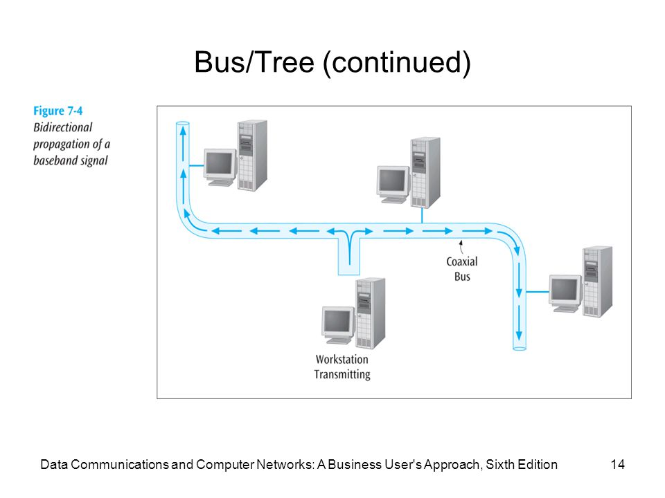 Data Communications and Computer Networks: A Business User s Approach, Sixth Edition14 Bus/Tree (continued)