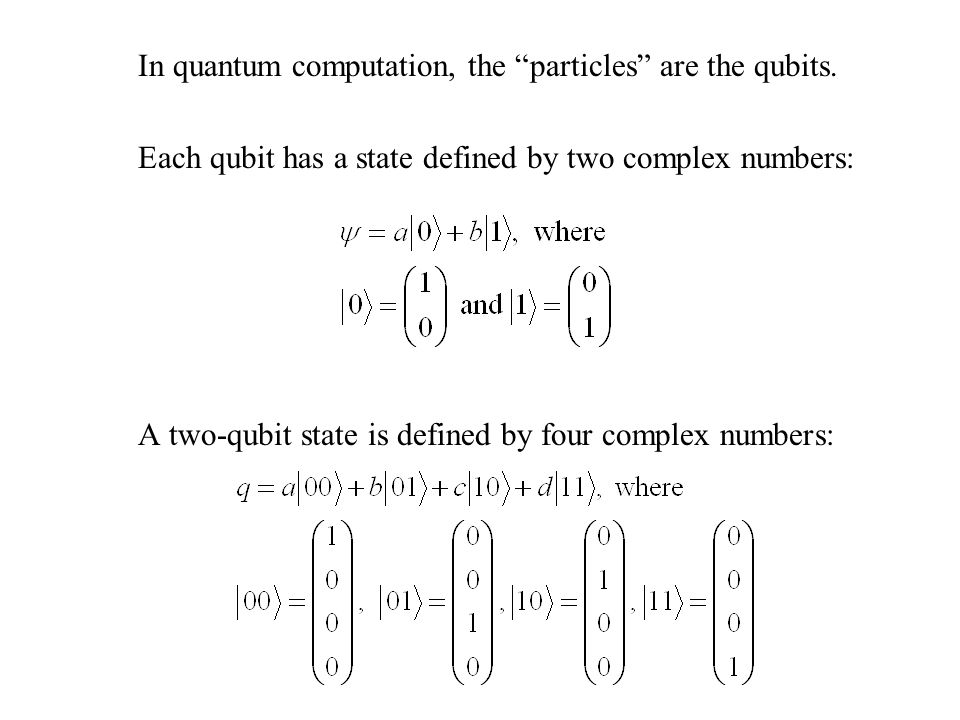In quantum computation, the particles are the qubits.