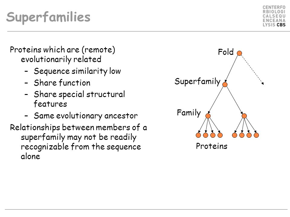 Superfamilies Proteins which are (remote) evolutionarily related –Sequence similarity low –Share function –Share special structural features –Same evolutionary ancestor Relationships between members of a superfamily may not be readily recognizable from the sequence alone Fold Family Superfamily Proteins