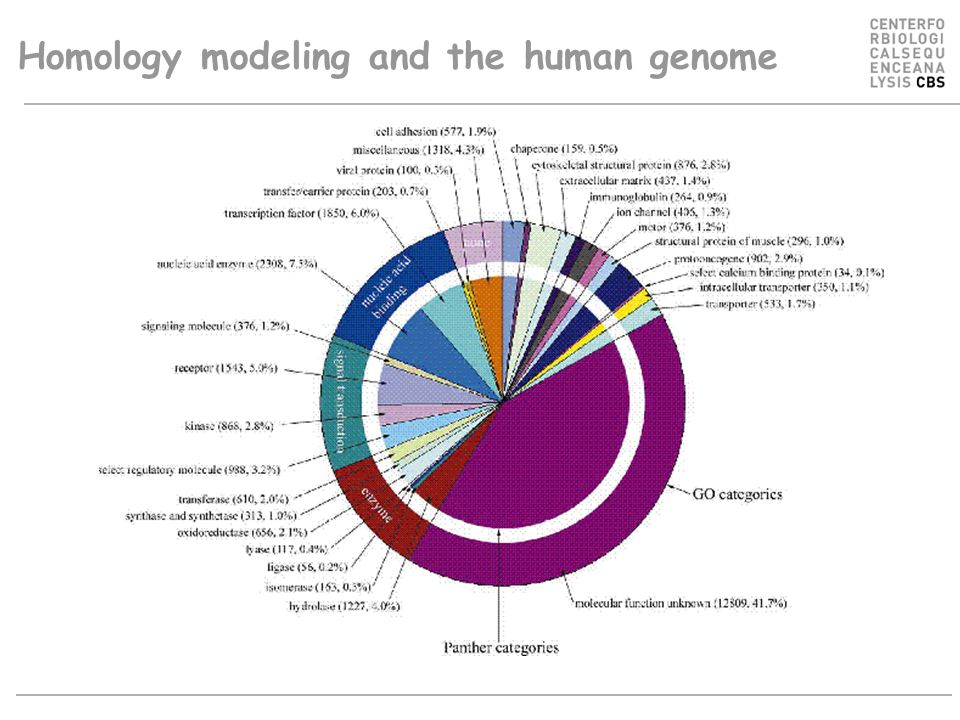 Human genome ~ proteins Homology modeling and the human genome