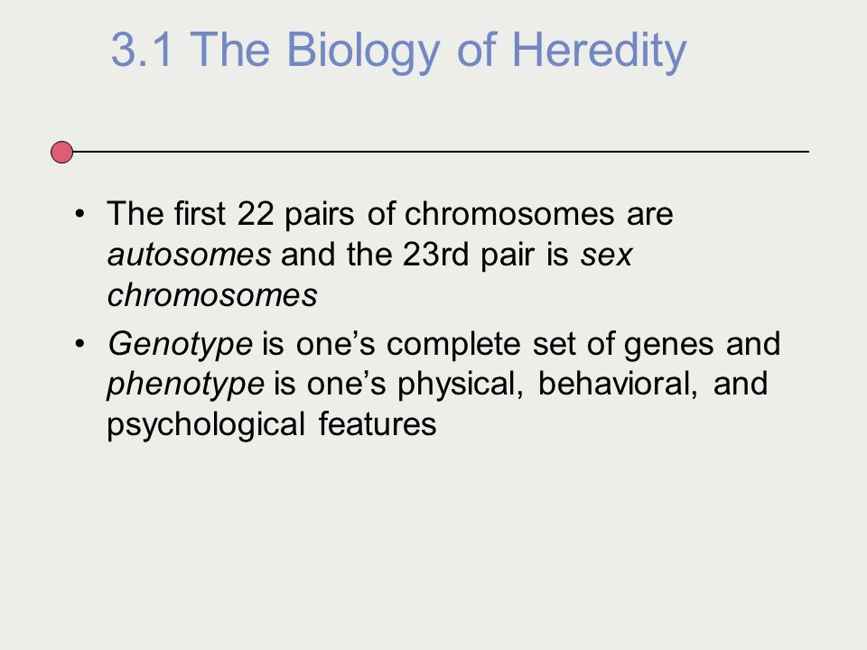 what are the mechanisms of heredity