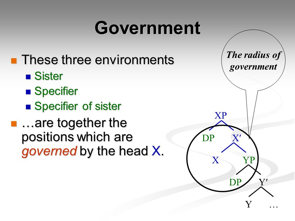 Government These three environments These three environments Sister Sister Specifier Specifier Specifier of sister Specifier of sister …are together the positions which are governed by the head X.