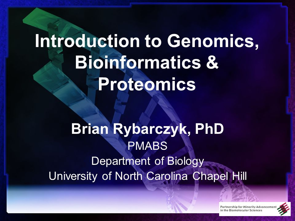 Introduction to Genomics, Bioinformatics & Proteomics Brian Rybarczyk, PhD PMABS Department of Biology University of North Carolina Chapel Hill