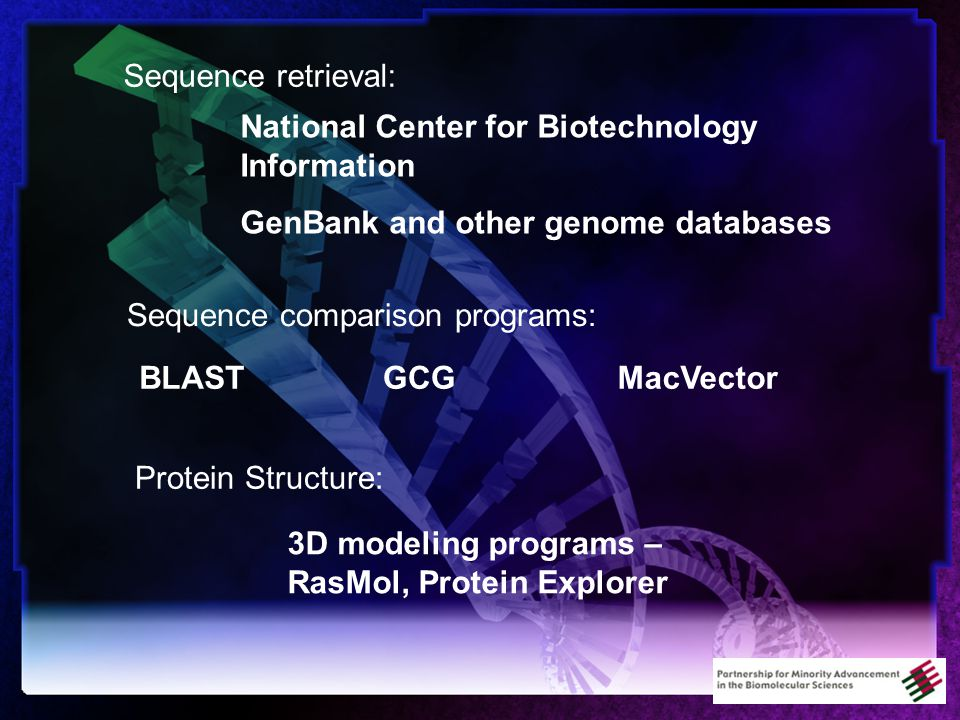National Center for Biotechnology Information GenBank and other genome databases Sequence retrieval: Protein Structure: 3D modeling programs – RasMol, Protein Explorer Sequence comparison programs: BLASTGCGMacVector