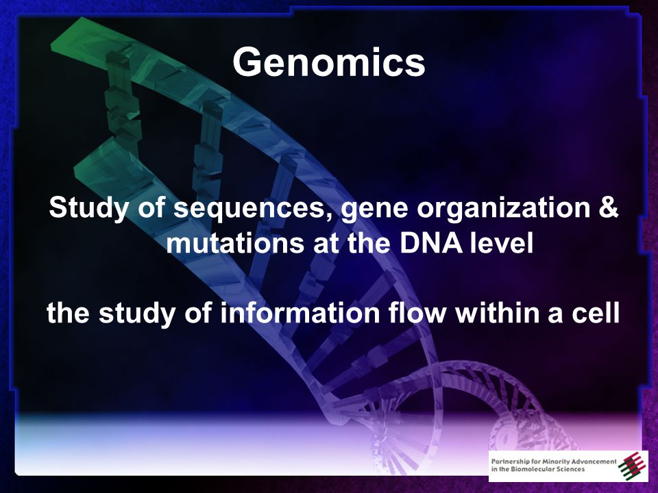 Genomics Study of sequences, gene organization & mutations at the DNA level the study of information flow within a cell