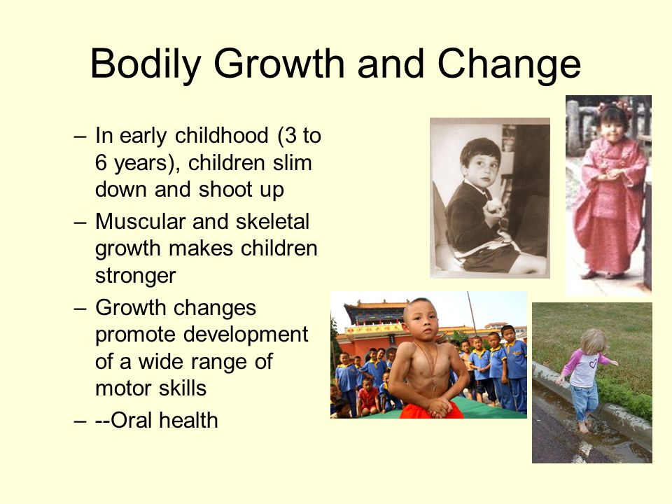 Bodily Growth and Change –In early childhood (3 to 6 years), children slim down and shoot up –Muscular and skeletal growth makes children stronger –Growth changes promote development of a wide range of motor skills –--Oral health