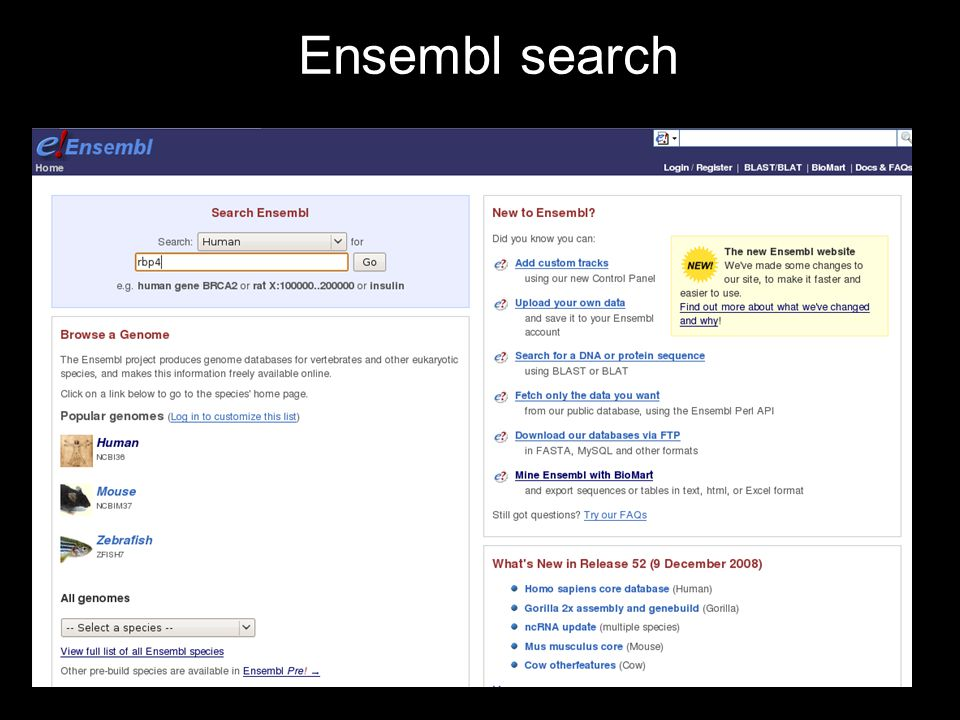 Ensembl search