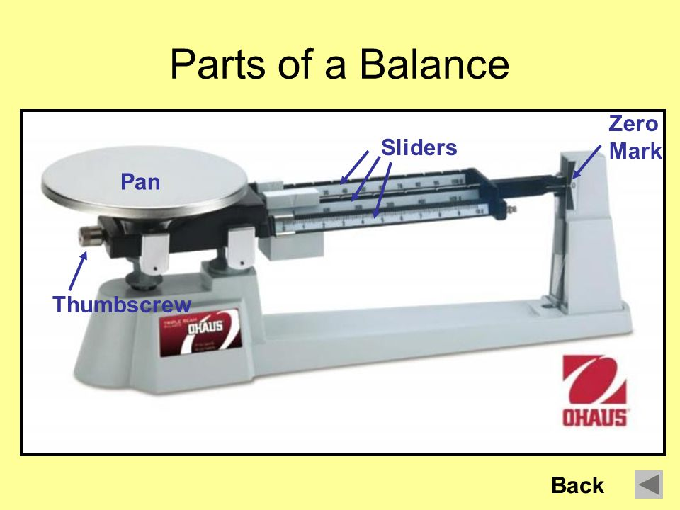 How To Use A Triple Beam Balance By John Erickson Next Ppt Download