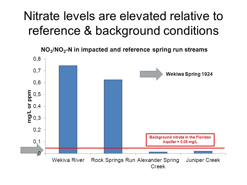 Nitrate levels are elevated relative to reference & background conditions Wekiwa Spring 1924