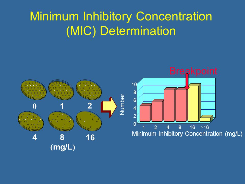 124816>16 Minimum Inhibitory Concentration (mg/L) Number Breakpoint ( mg/L ) Minimum Inhibitory Concentration (MIC) Determination