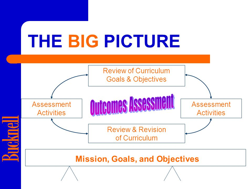 THE BIG PICTURE Mission, Goals, and Objectives Review of Curriculum Goals & Objectives Assessment Activities Review & Revision of Curriculum Assessment Activities