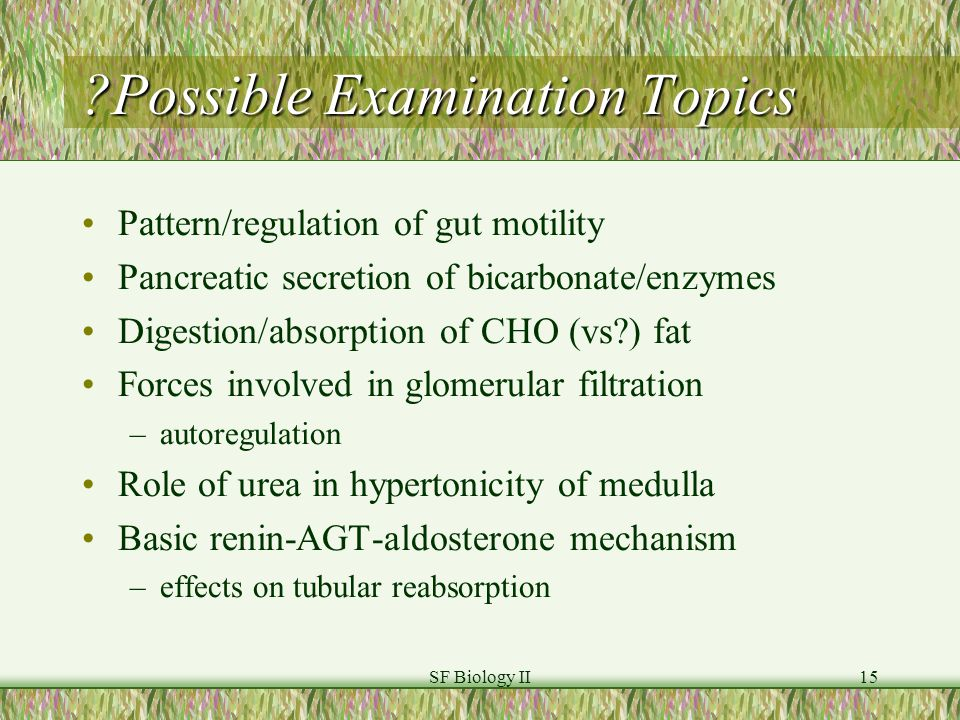 SF Biology II15 Possible Examination Topics Pattern/regulation of gut motility Pancreatic secretion of bicarbonate/enzymes Digestion/absorption of CHO (vs ) fat Forces involved in glomerular filtration –autoregulation Role of urea in hypertonicity of medulla Basic renin-AGT-aldosterone mechanism –effects on tubular reabsorption