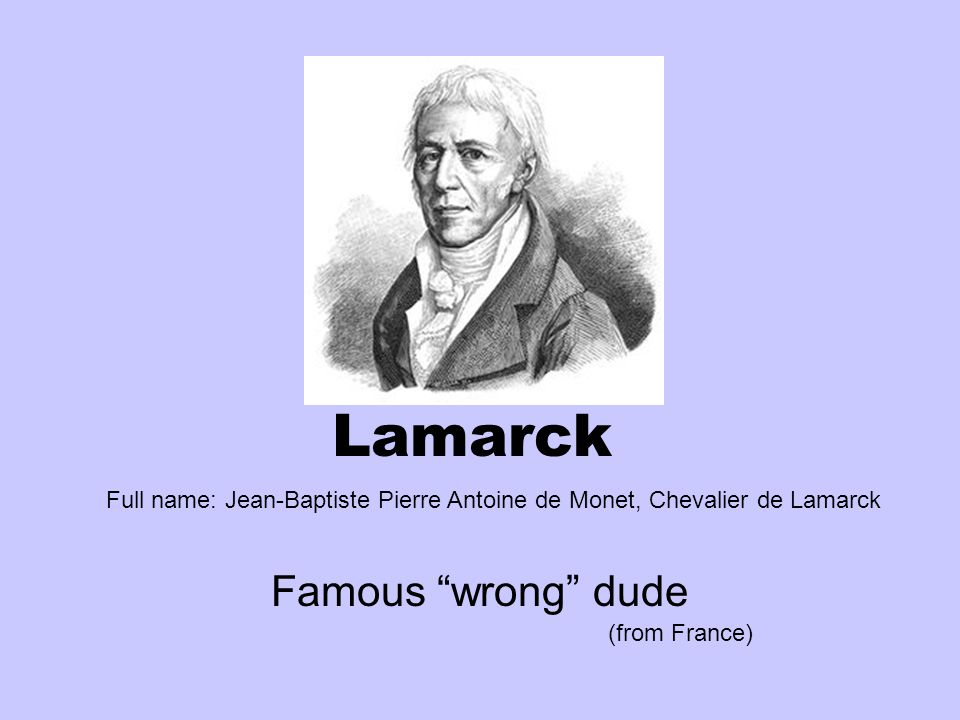 "Lamarck Famous ""wrong"" dude (from France) Full name: Jean-Baptiste ..."