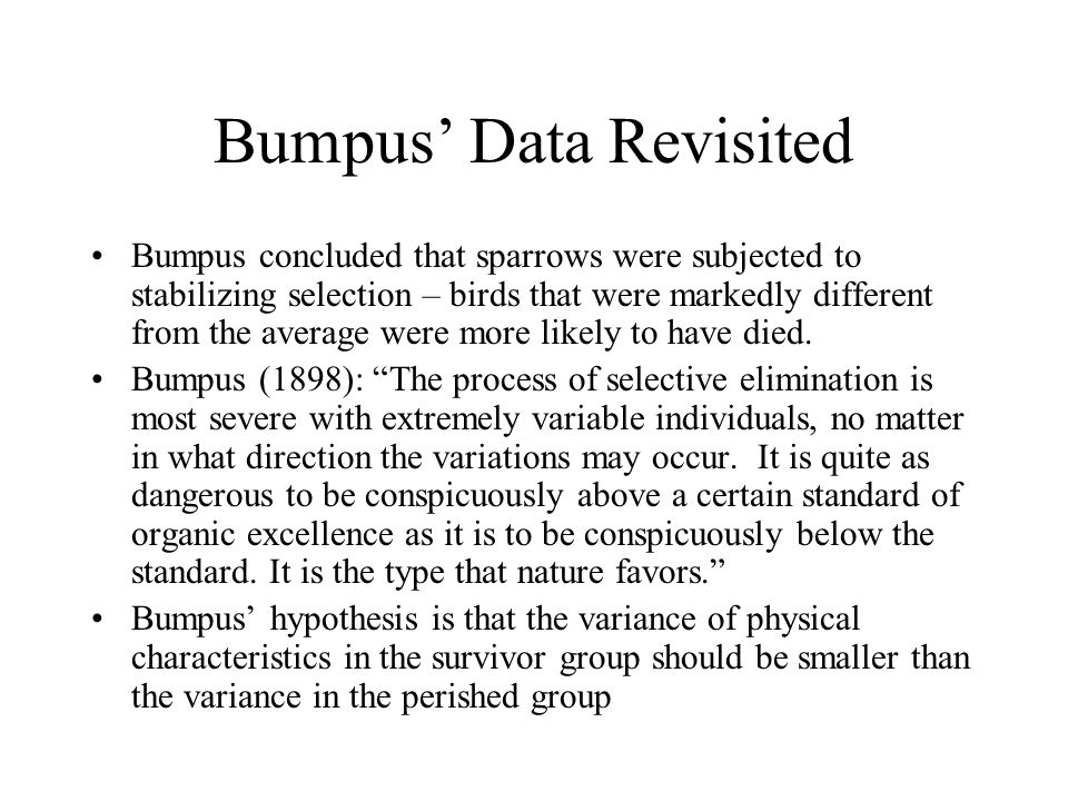 Bumpus' Data Revisited Bumpus concluded that sparrows were subjected to stabilizing selection – birds that were markedly different from the average were more likely to have died.