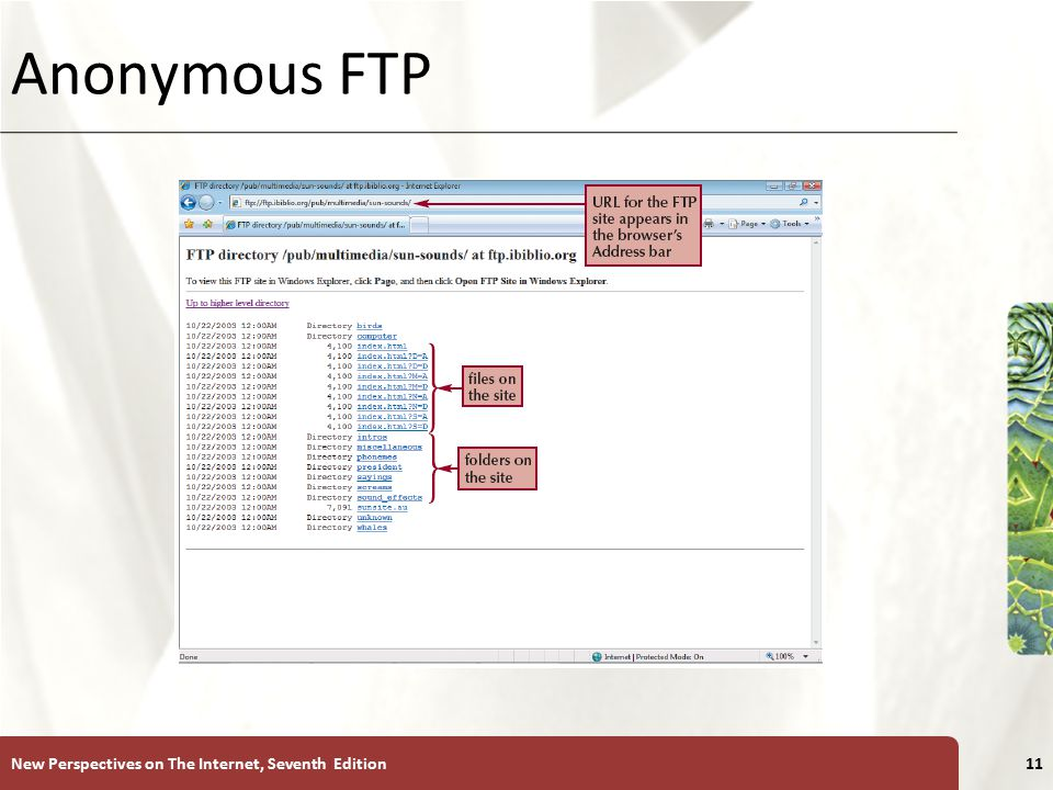 XP Anonymous FTP New Perspectives on The Internet, Seventh Edition11