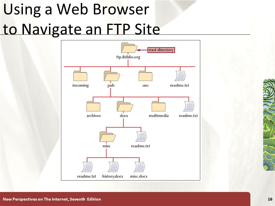XP Using a Web Browser to Navigate an FTP Site New Perspectives on The Internet, Seventh Edition16