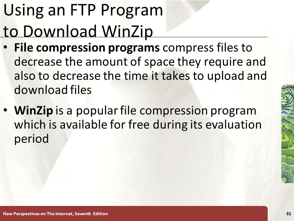 XP Using an FTP Program to Download WinZip File compression programs compress files to decrease the amount of space they require and also to decrease the time it takes to upload and download files WinZip is a popular file compression program which is available for free during its evaluation period New Perspectives on The Internet, Seventh Edition31