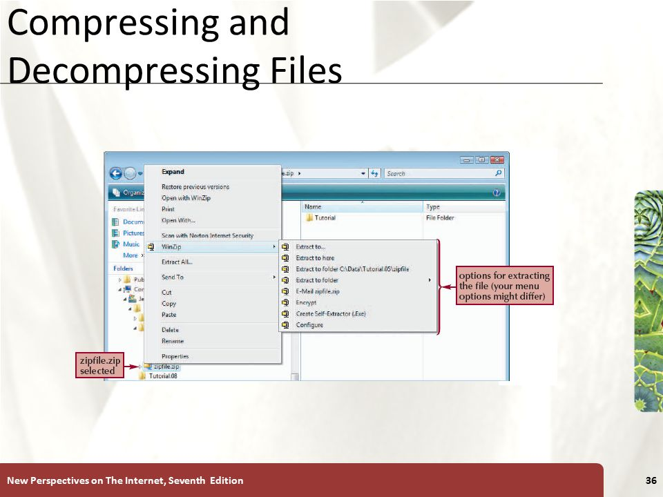 XP Compressing and Decompressing Files New Perspectives on The Internet, Seventh Edition36