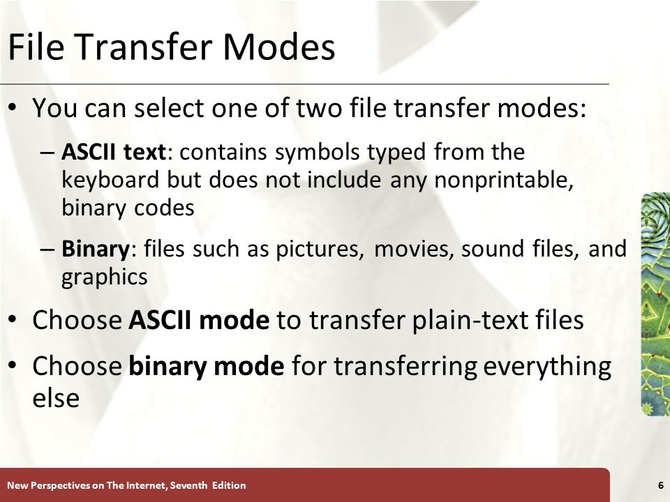 XP File Transfer Modes You can select one of two file transfer modes: – ASCII text: contains symbols typed from the keyboard but does not include any nonprintable, binary codes – Binary: files such as pictures, movies, sound files, and graphics Choose ASCII mode to transfer plain-text files Choose binary mode for transferring everything else New Perspectives on The Internet, Seventh Edition6