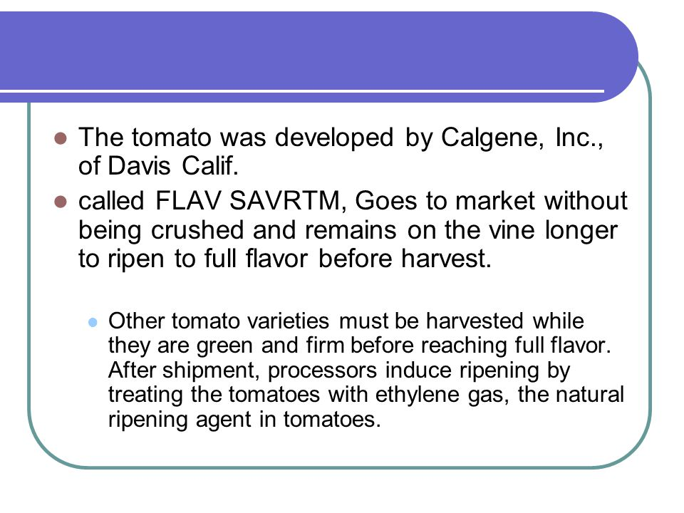 The tomato was developed by Calgene, Inc., of Davis Calif.