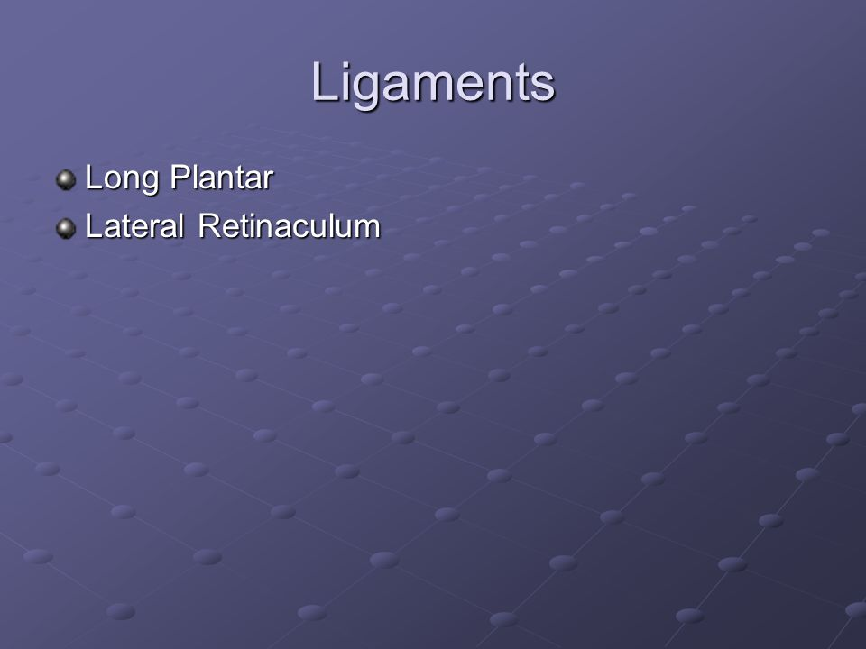 Ligaments Long Plantar Lateral Retinaculum