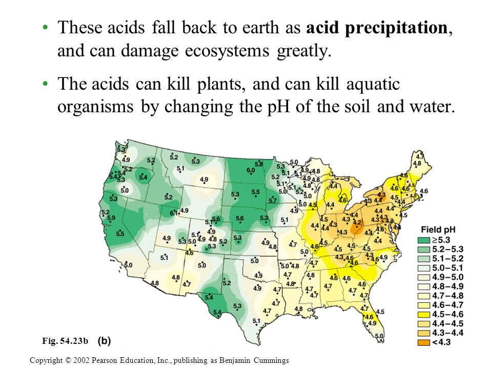 These acids fall back to earth as acid precipitation, and can damage ecosystems greatly.