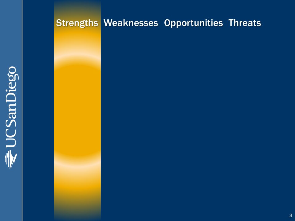 3 Strengths Weaknesses Opportunities Threats