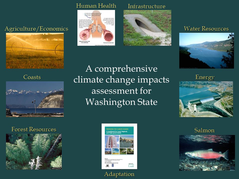 HumanHealth Human Health Agriculture/Economics Salmon Forest Resources CoastsEnergy Infrastructure Water Resources A comprehensive climate change impacts assessment for Washington State Adaptation