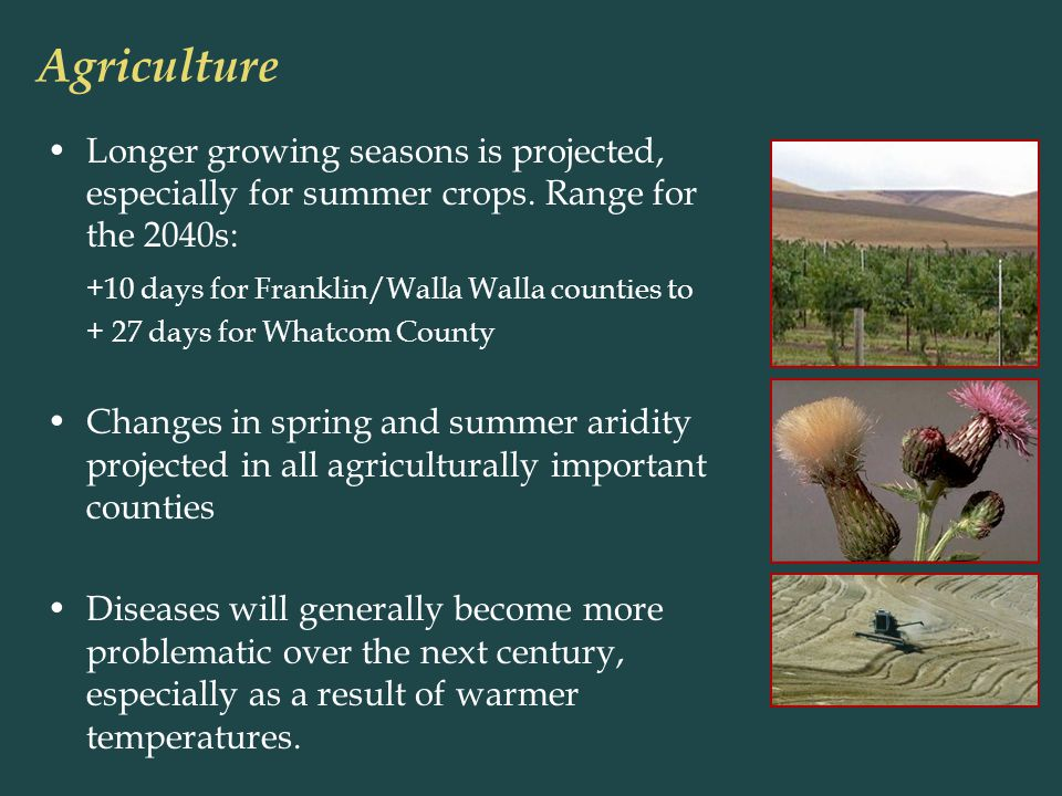 Longer growing seasons is projected, especially for summer crops.