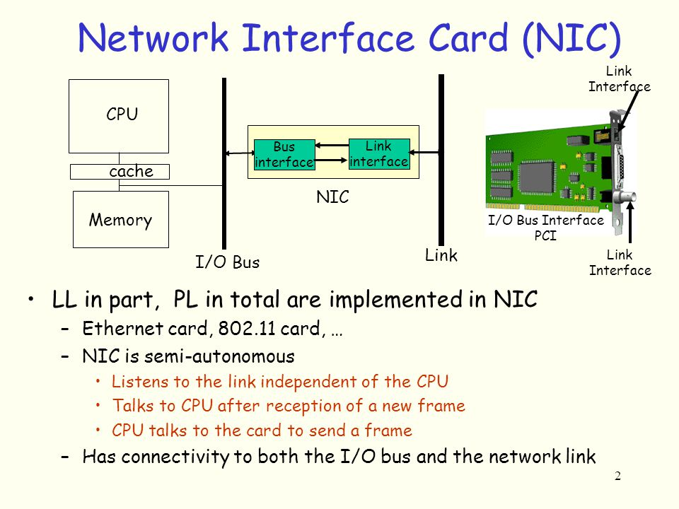 1 Physical Layer Data Encoding Transmission 2 Network Interface