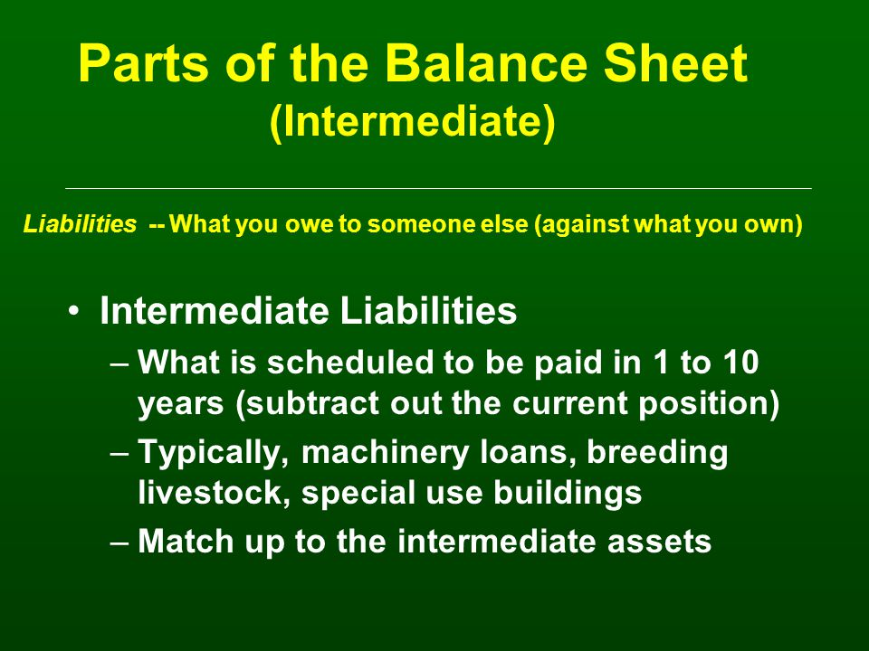 Parts of the Balance Sheet (Current) Liabilities -- What you owe someone else (against what you own) Current Liabilities –What you are scheduled to pay in the next 12 months –Unpaid bills, accrued interest, property taxes –Operating loans –Principal payments on term debts to be made in the next 12 months