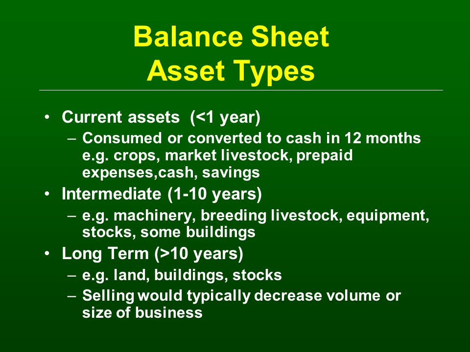 Balance Sheet Preparation Some Issues IDENTIFY clearly the person(s) or the business entity being described SEPARATE the business assets and liabilities from the personal Be CONSISTENT as to WHEN the Balance Sheet is prepared –at a minimum, prepare a net worth statement when your accounting year ends Valuation of Assets -- costs and/or market –recommend two column balance sheet The Balance Sheet is the Cornerstone to Financial Management