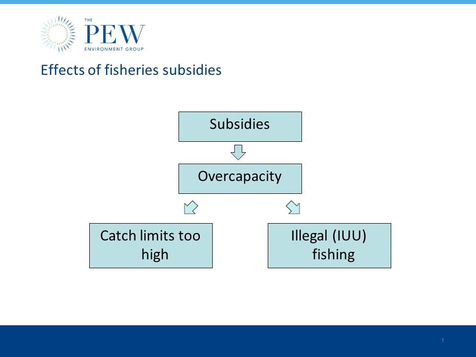 illegal fishing effects
