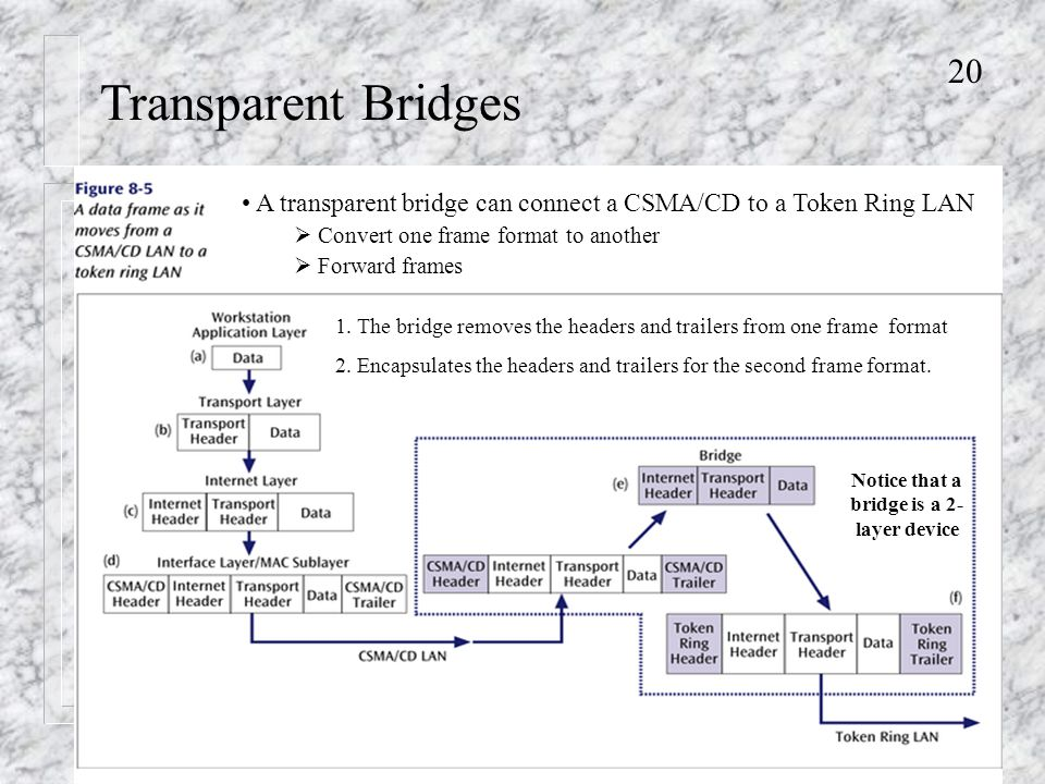 20 Transparent Bridges A transparent bridge can connect a CSMA/CD to a Token Ring LAN  Convert one frame format to another  Forward frames 1.