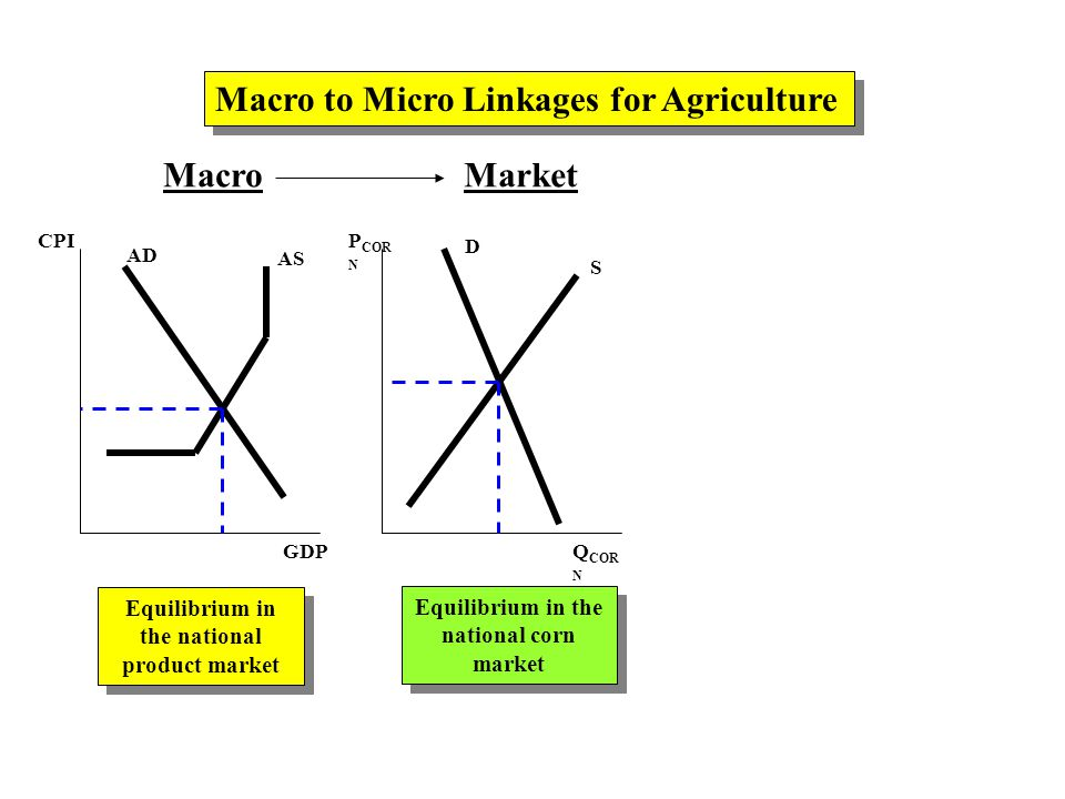 MacroMarket AD AS CPI GDP P COR N Q COR N D S Macro to Micro Linkages for Agriculture Equilibrium in the national product market Equilibrium in the national corn market