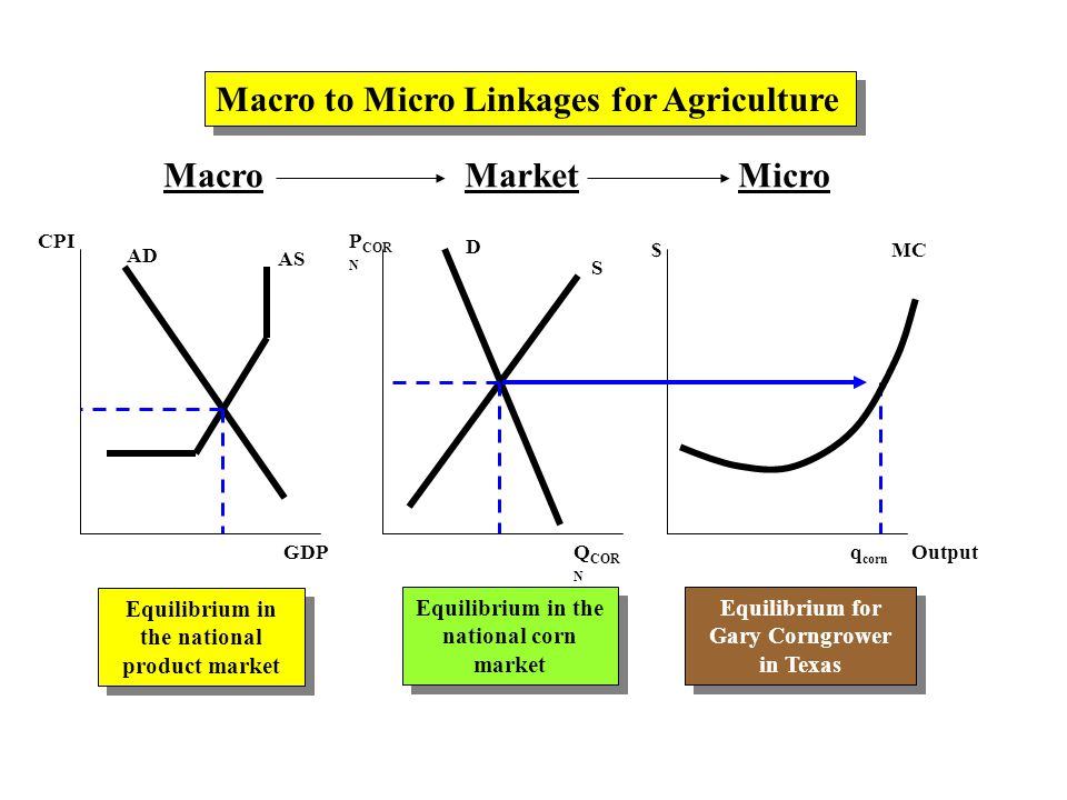 MacroMarketMicro AD AS CPI GDP P COR N Q COR N $ Output D S MC Macro to Micro Linkages for Agriculture Equilibrium in the national product market Equilibrium in the national corn market Equilibrium for Gary Corngrower in Texas Equilibrium for Gary Corngrower in Texas q corn