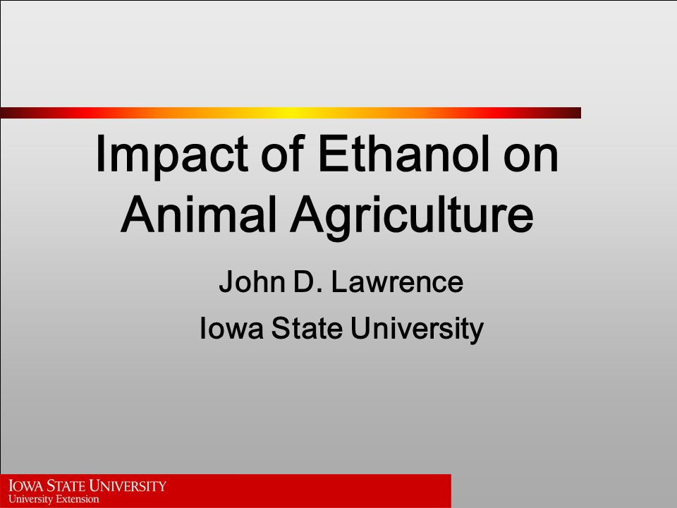 Impact of Ethanol on Animal Agriculture John D. Lawrence Iowa State University