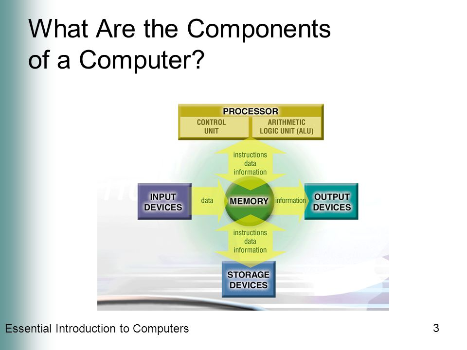 Essential Introduction to Computers 3 What Are the Components of a Computer