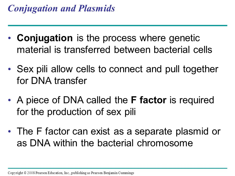 Copyright © 2008 Pearson Education, Inc., publishing as Pearson Benjamin Cummings Conjugation and Plasmids Conjugation is the process where genetic material is transferred between bacterial cells Sex pili allow cells to connect and pull together for DNA transfer A piece of DNA called the F factor is required for the production of sex pili The F factor can exist as a separate plasmid or as DNA within the bacterial chromosome