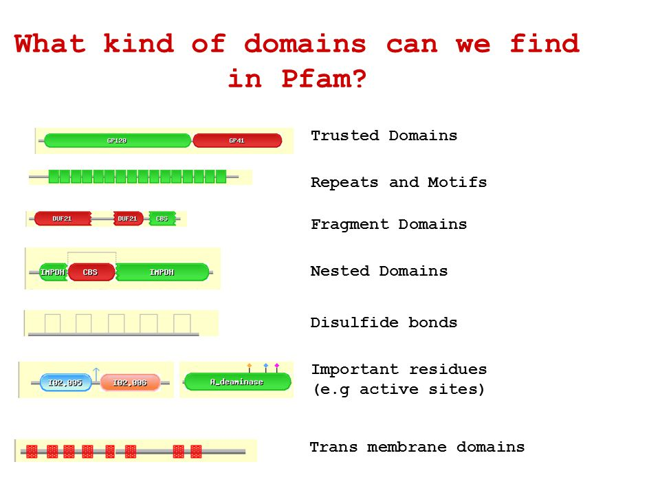 What kind of domains can we find in Pfam.