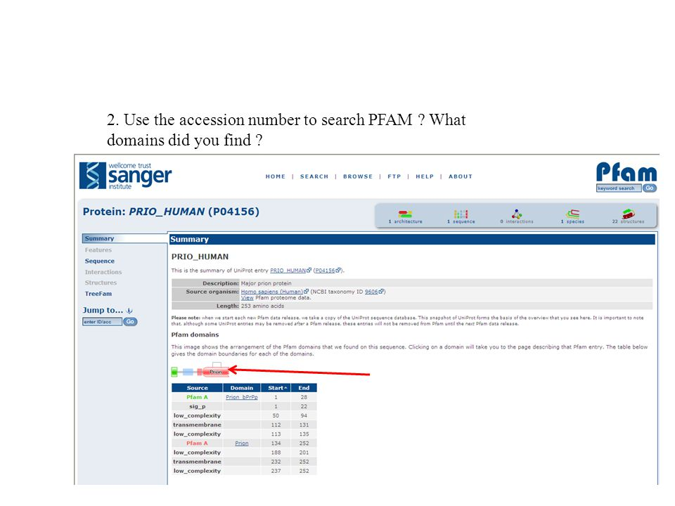 2. Use the accession number to search PFAM What domains did you find