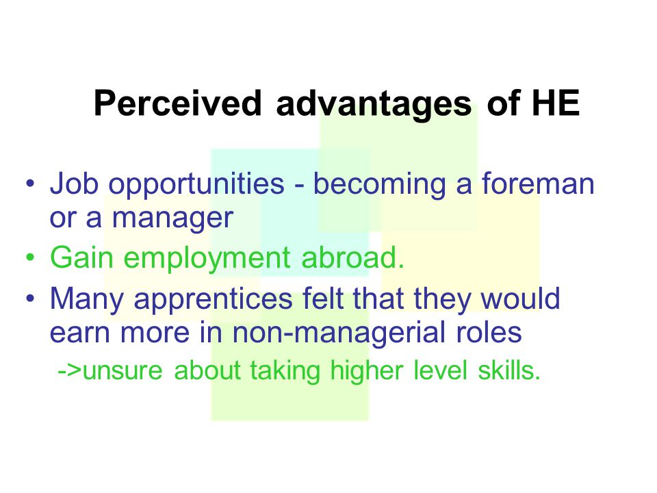 Perceived advantages of HE Job opportunities - becoming a foreman or a manager Gain employment abroad.